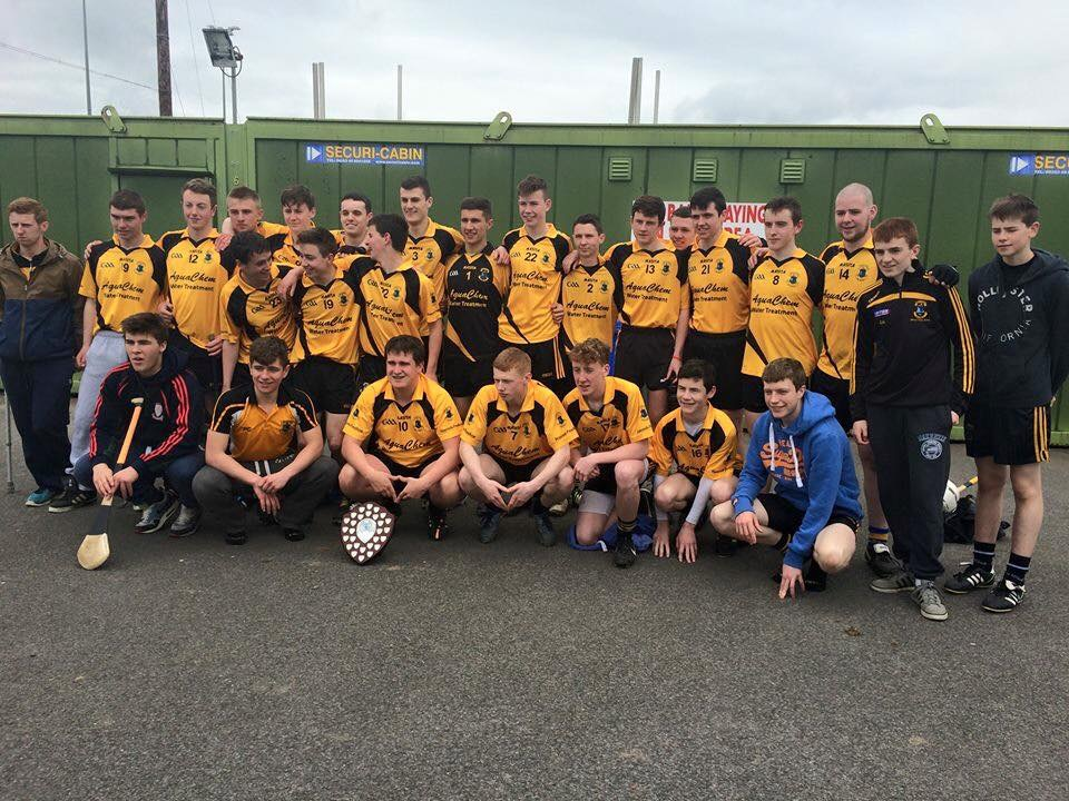 St Peters Dunboyne  2015 Minor Hurling Shield Winners